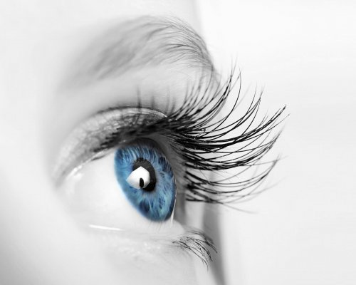 human eye with long eyelashes close up